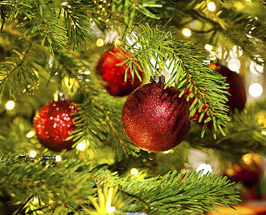 Bauble Ornament in a real Christmas tree